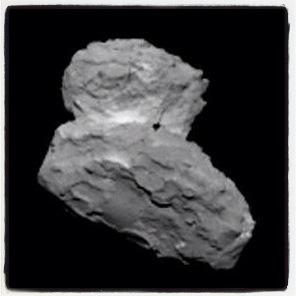 Rosetta & A Big Stone