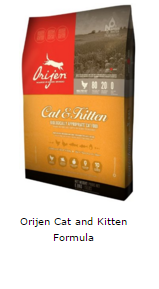 catfooddispensersreviews