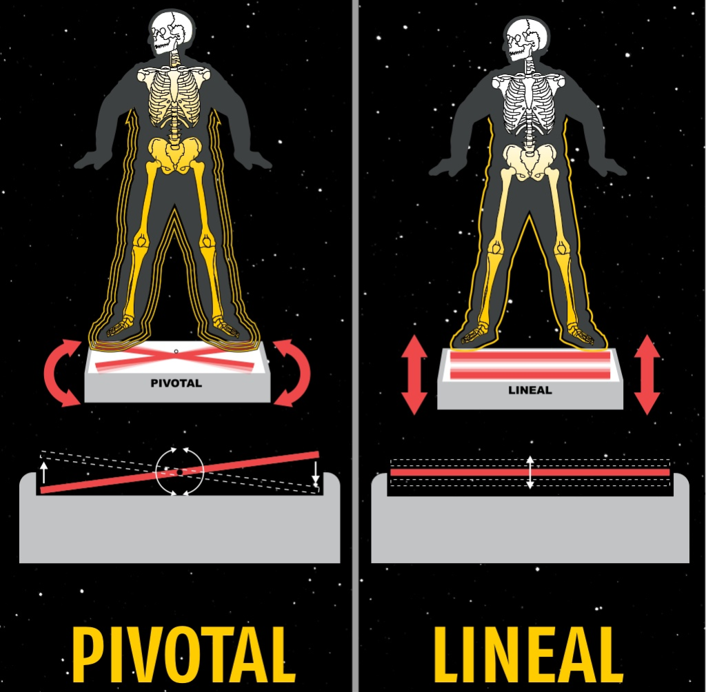 vibration exercise machine before and after