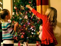 Five Stunning Ideas to Trim Your Christmas Tree