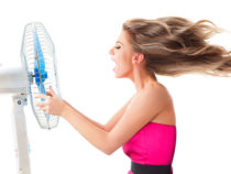 There Must Be a Fan that can Save You from Hot Summer Days