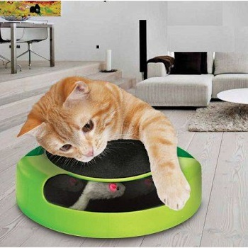 """Catch The Mouse"" Interactive Cat Scratch Pad"