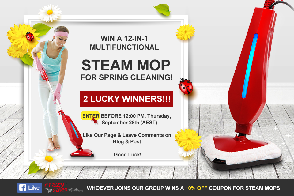 2017 Steam Mop Giveaway Terms and Conditions