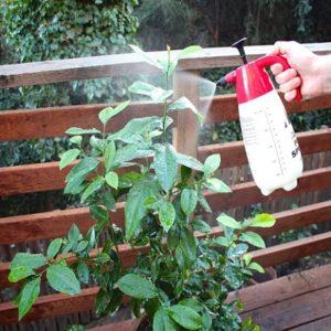plant organic spray