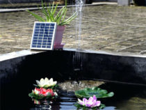 Solar Water Pump Reviews | How to Find the Best Solar Pump for Your Fountain, Pond and Pool